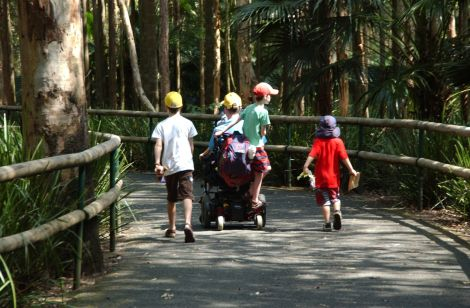 There are always upsides, including built-in transport for the boys on a day trip to Australia Zoo in November.