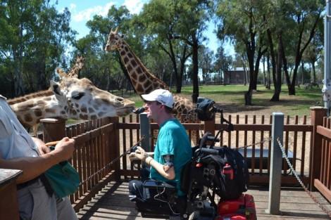 matthew-feeding-giraffe